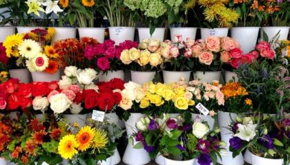 Цветочный магазин в Минске