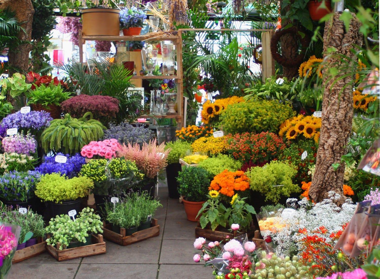 Продается цветочный магазин