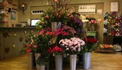 Продажа цветочного бизнеса минск объявления жить красиво услуги строительство