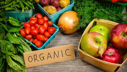 fresh_organic_vegetables
