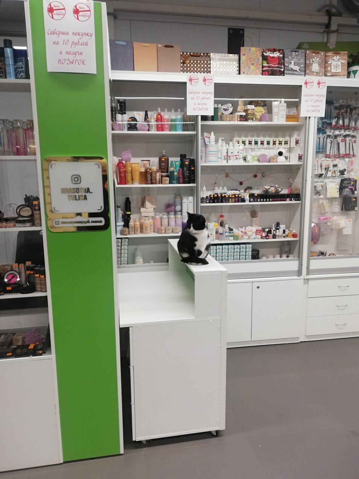 профессиональный магазин галерея косметики